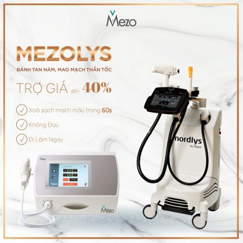 mezolys-banner-1-1